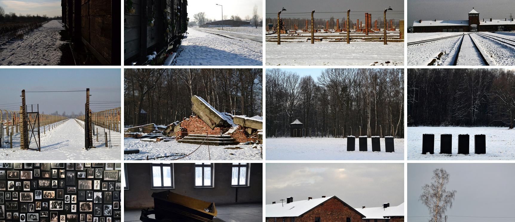 AuschwitzBandeau